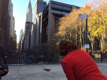 Heintz identifies the spot to use the New York skyline for her next holiday card shot with her fake family copyright IMITATING LIFE 2015